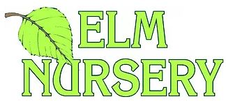 Elm Nursery